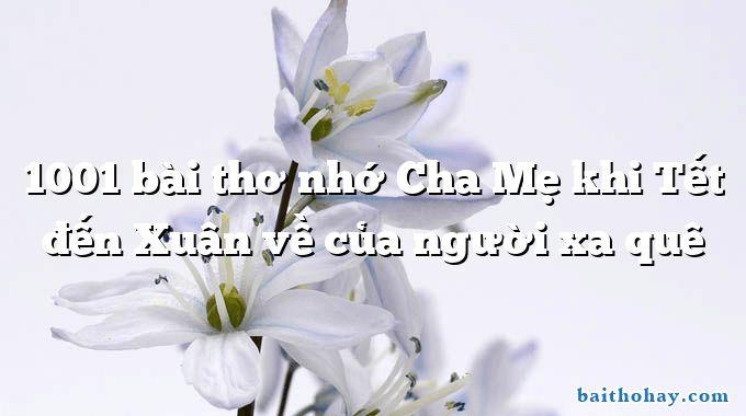 1001 bai tho nho cha me khi tet den xuan ve cua nguoi xa que - Gọi điện cho bố - Nguyễn Lãm Thắng