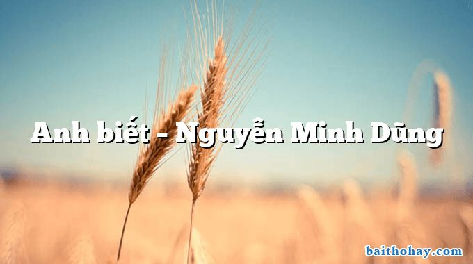 Anh biết – Nguyễn Minh Dũng
