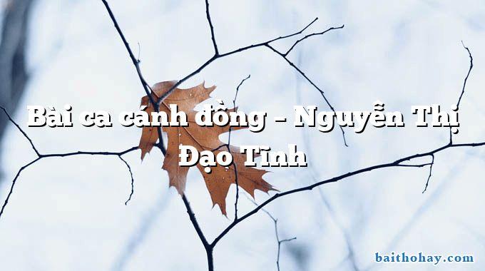 Bài ca cánh đồng  –  Nguyễn Thị Đạo Tĩnh