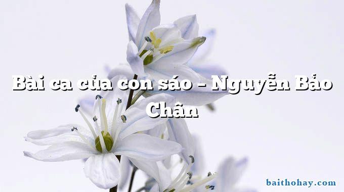 Bài ca của con sáo  –  Nguyễn Bảo Chân