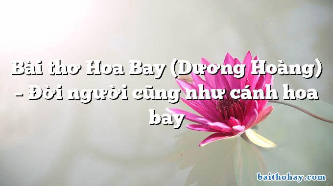 Bài thơ Hoa Bay (Dương Hoàng) – Đời người cũng như cánh hoa bay