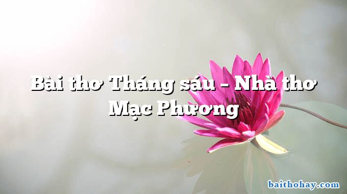 Bài thơ Tháng sáu – Nhà thơ Mạc Phương