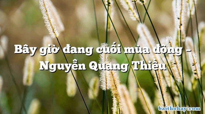 Bây giờ đang cuối mùa đông  –  Nguyễn Quang Thiều