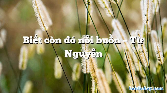 biet con do noi buon tu nguyen - Chú thợ điện - Vương Trọng