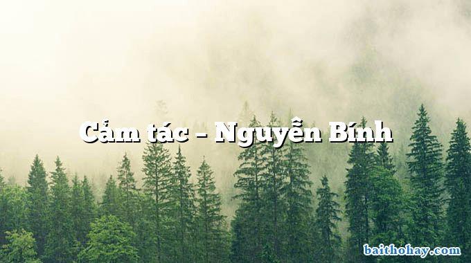 Cảm tác  –  Nguyễn Bính