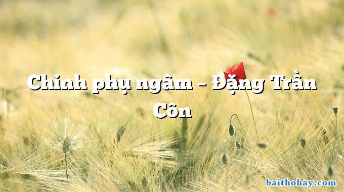 Chinh phụ ngâm – Đặng Trần Côn