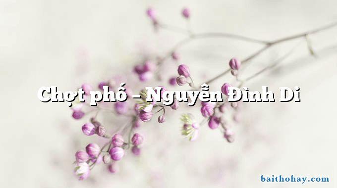 Chợt phố  –  Nguyễn Đình Di