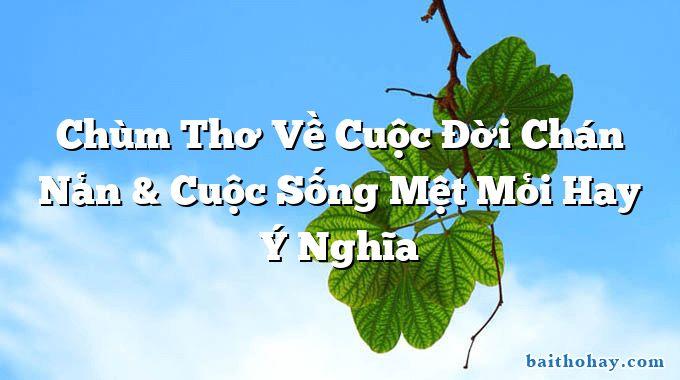 chum tho ve cuoc doi chan nan cuoc song met moi hay y nghia - Chí khí anh hùng - Nguyễn Du