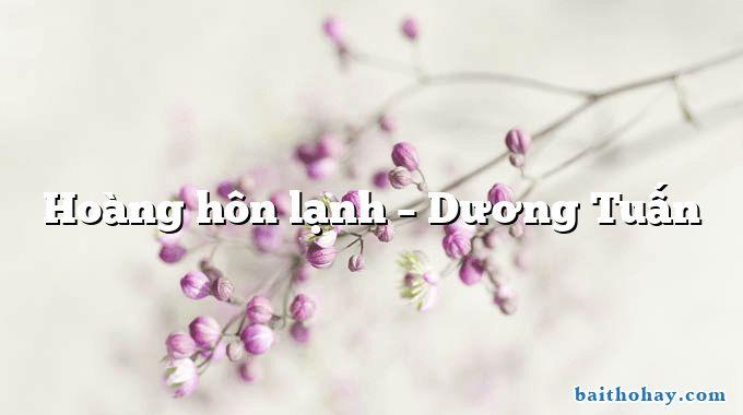 Hoàng hôn lạnh – Dương Tuấn