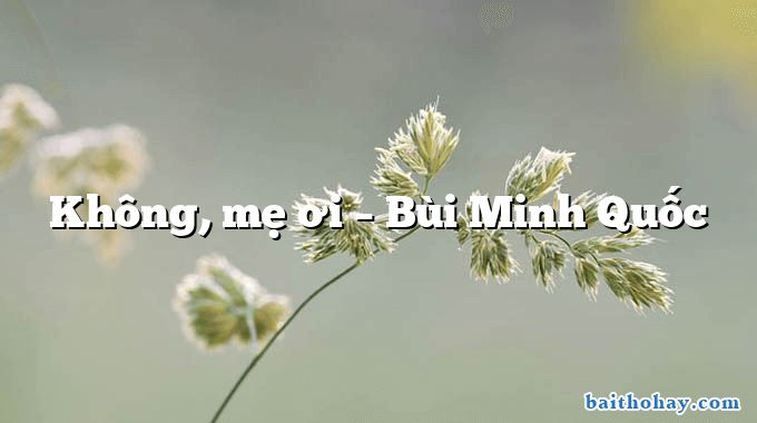 Không, mẹ ơi  –  Bùi Minh Quốc