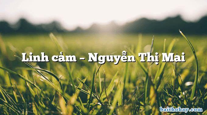 Linh cảm  –  Nguyễn Thị Mai