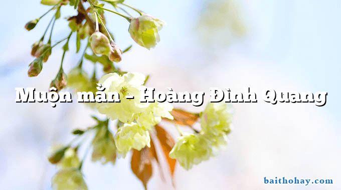 Muộn mằn  –  Hoàng Đình Quang