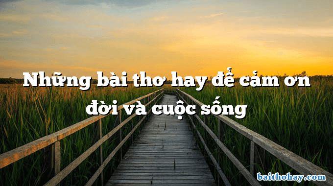 nhung bai tho hay de cam on doi va cuoc song - Âm thầm mưa - Tuệ Nga