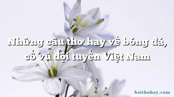 Những câu thơ hay về bóng đá, cổ vũ đội tuyển Việt Nam