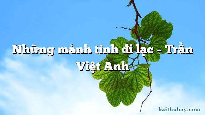 Những mảnh tình đi lạc  –  Trần Việt Anh