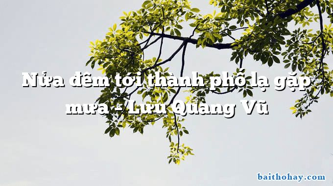 Nửa đêm tới thành phố lạ gặp mưa  –  Lưu Quang Vũ