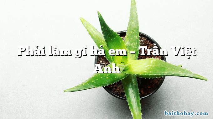 Phải làm gì hả em  –  Trần Việt Anh