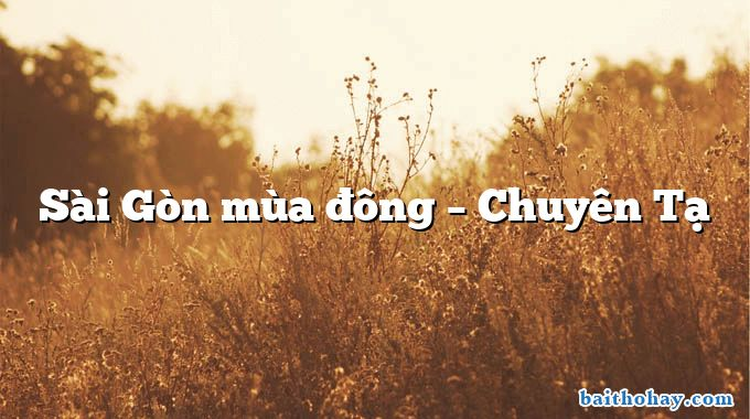 Sài Gòn mùa đông – Chuyên Tạ