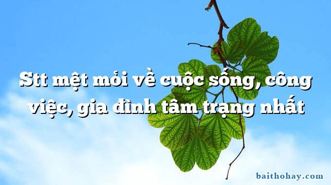 stt met moi ve cuoc song cong viec gia dinh tam trang nhat - Người làm công chức - Nguyễn Thanh Thanh