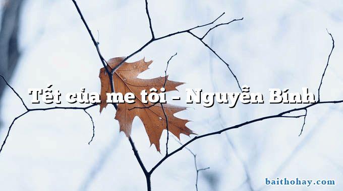 Tết của me tôi  –  Nguyễn Bính