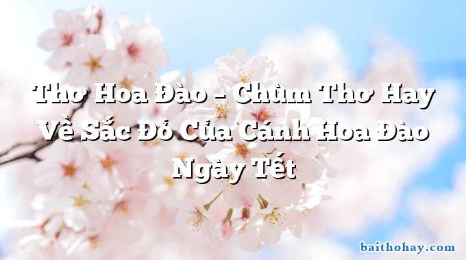 tho hoa dao chum tho hay ve sac do cua canh hoa dao ngay tet - Ngóng gió đông - Nguyễn Đình Chiểu