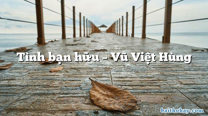 Tình bạn hữu – Vũ Việt Hùng
