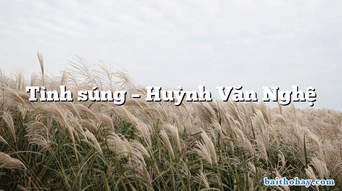 Tình súng – Huỳnh Văn Nghệ