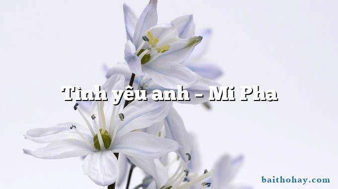 Tình yêu anh – Mi Pha
