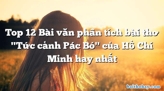 top 12 bai van phan tich bai tho tuc canh pac bo cua ho chi minh hay nhat - Dĩ hòa vi quý - Nguyễn Bỉnh Khiêm