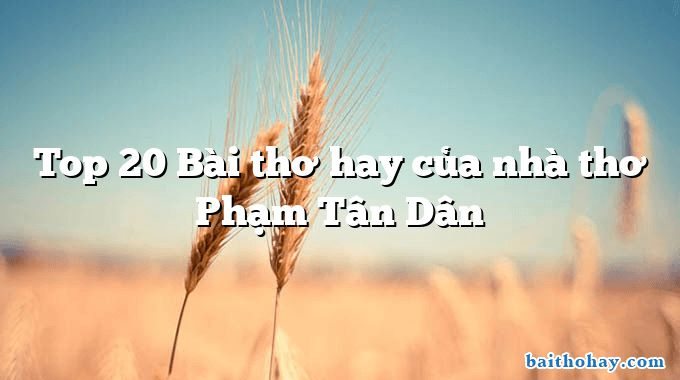 Top 20 Bài thơ hay của nhà thơ Phạm Tân Dân