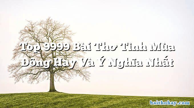 Top 9999 Bài Thơ Tình Mùa Đông Hay Và Ý Nghĩa Nhất