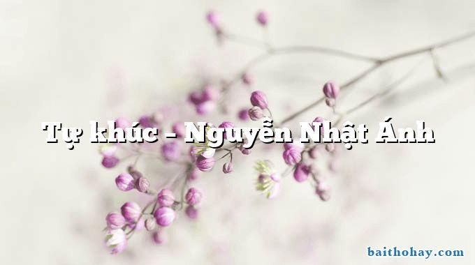 Tự khúc  –  Nguyễn Nhật Ánh