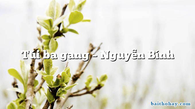 Túi ba gang  –  Nguyễn Bính