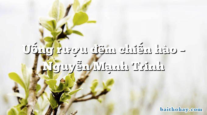 Uống rượu đêm chiến hào  –  Nguyễn Mạnh Trinh