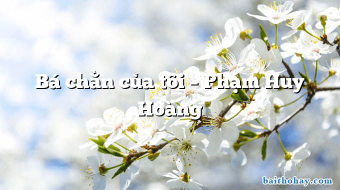 Bá chằn của tôi – Phạm Huy Hoàng
