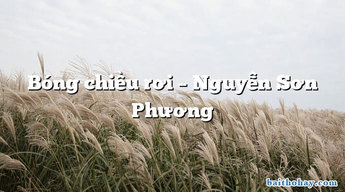 Bóng chiều rơi – Nguyễn Sơn Phương
