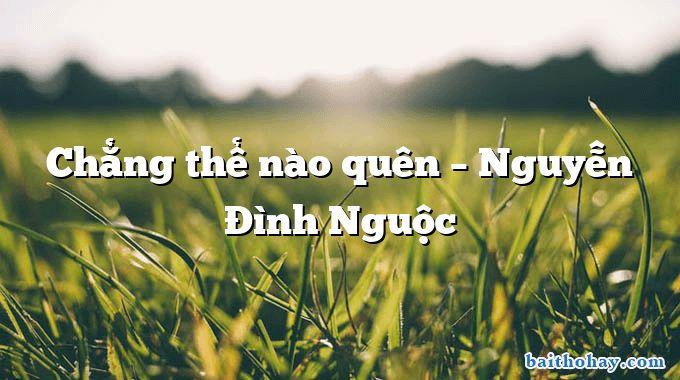 Chẳng thể nào quên – Nguyễn Đình Nguộc