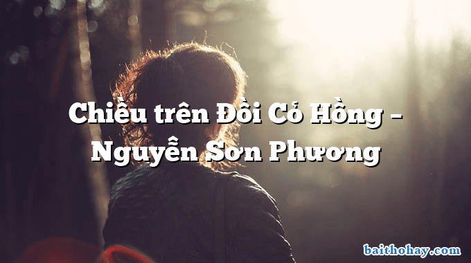 Chiều trên Đồi Cỏ Hồng – Nguyễn Sơn Phương