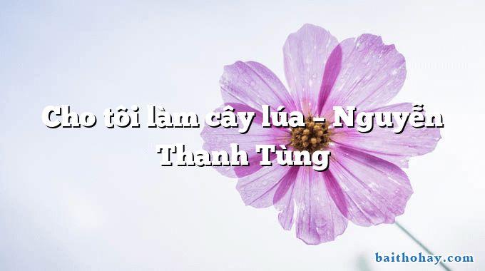 Cho tôi làm cây lúa – Nguyễn Thanh Tùng