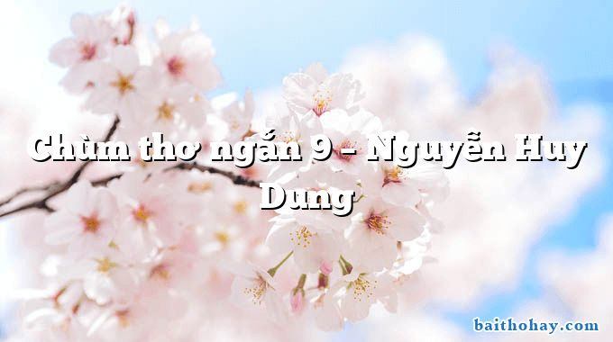 Chùm thơ ngắn 9 – Nguyễn Huy Dung
