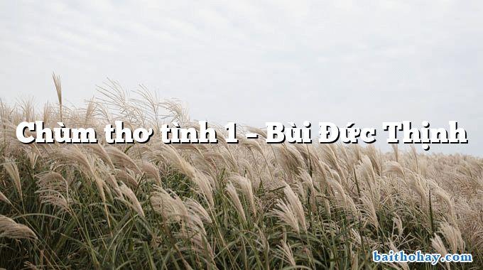 Chùm thơ tình 1 – Bùi Đức Thịnh