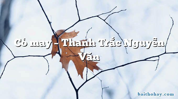 Cỏ may – Thanh Trắc Nguyễn Văn