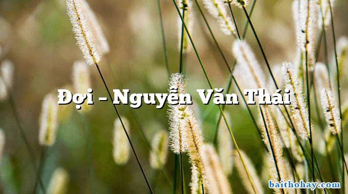 Đợi – Nguyễn Văn Thái