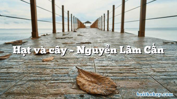 Hạt và cây – Nguyễn Lâm Cẩn