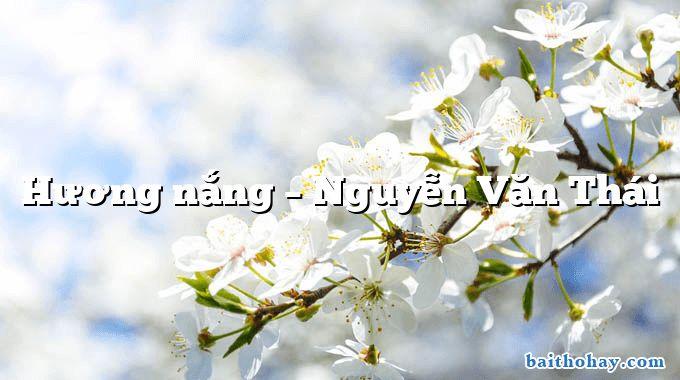 Hương nắng – Nguyễn Văn Thái