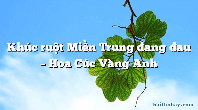 Khúc ruột Miền Trung đang đau – Hoa Cúc Vàng Anh