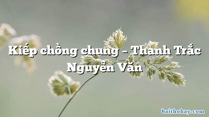 Kiếp chồng chung – Thanh Trắc Nguyễn Văn