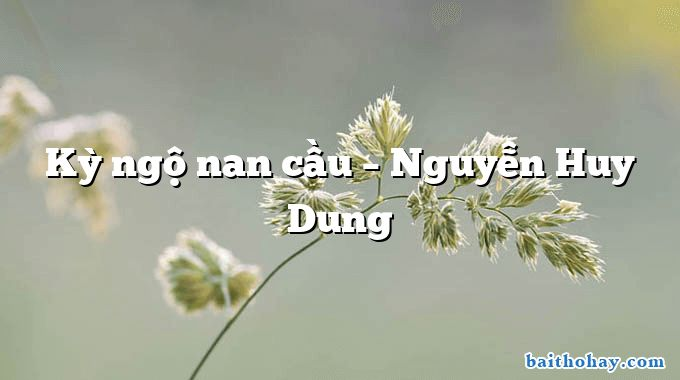 Kỳ ngộ nan cầu – Nguyễn Huy Dung
