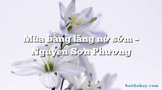 Mùa bằng lăng nở sớm – Nguyễn Sơn Phương