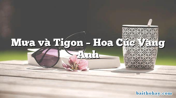 Mưa và Tigon – Hoa Cúc Vàng Anh